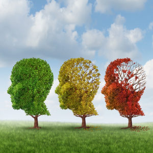 Elderly Care in Radnor PA: Risk Factors for Alzheimer's Disease